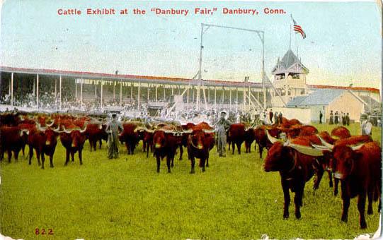 Penny Postcards - Maggie's Farm