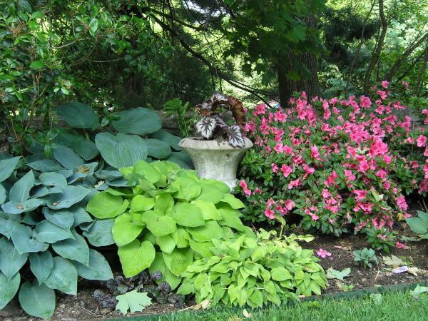 Čarobni vrt Garden6-08001